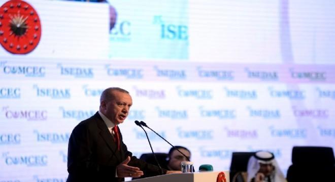 Erdoğan Türkiye'de fiber hat konusunun yavaş ilerlediğini belirterek,