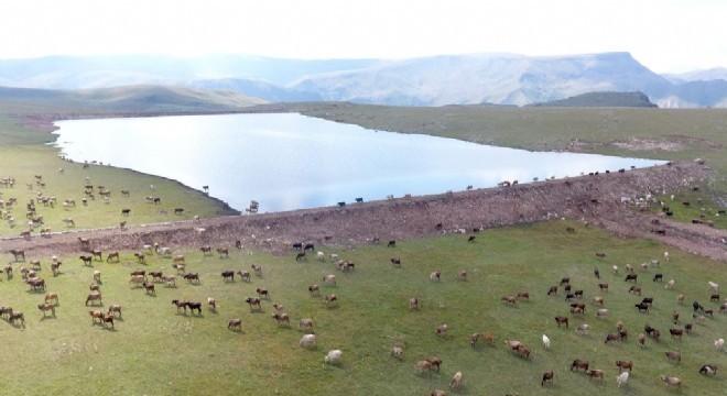 Tarım ve hayvancılık yatırımlarıyla yerel yönetim anlayışına yepyeni bir boyut kazandıran Erzurum Büyükşehir Belediyesi, gölet yapımında Türkiye rekoru kırdı.
